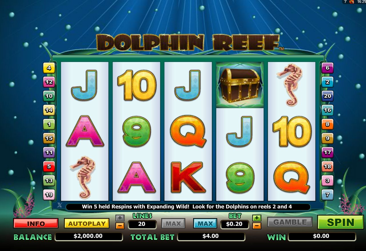 dolphin-reef-smbl