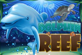 dolphin_reef logo