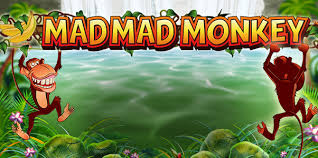 mad mad monkey front